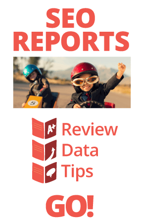 SEO Reports - Review, Data, Tips